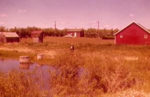 WATSON1955-003